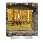 Stone Window View And Beautiful Horse Shower Curtain