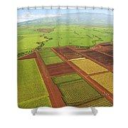 Sugar Cane Fields Shower Curtain