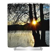 Sunlight Between The Trees Shower Curtain
