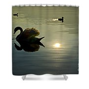 Swan And Ducks Shower Curtain