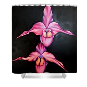 Sweet Temptations Shower Curtain