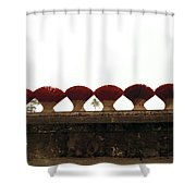 Symmetry  Shower Curtain