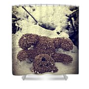 Teddy In Snow Shower Curtain