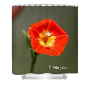Thank You - Card Shower Curtain
