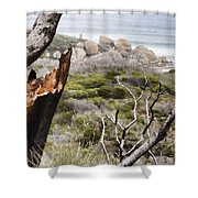 The Death Of A Tree V2 Shower Curtain