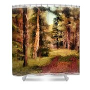 The End Of The Road Shower Curtain