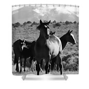 The Family Wild Shower Curtain