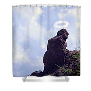 The Praying Monk With Halo - Camelback Mountain Shower Curtain