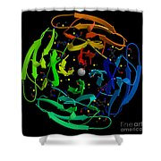 Thermotoga Maritime Protein Shower Curtain