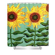 Three Sunflowers Shower Curtain by Genevieve Esson