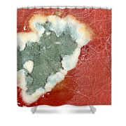 Tomato Juice 2 Shower Curtain