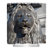 Trafalgar Square Lion Shower Curtain