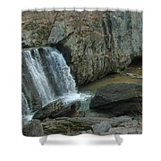 Turtle In The Rocks Shower Curtain