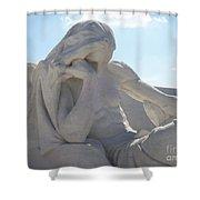 Vimy Ridge 3 Shower Curtain