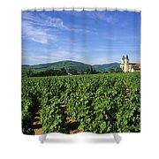 Vineyard. Regnie-durette. Beaujolais Wine Growing Area. Departement Rhone. Region Rhone-alpes. Franc Shower Curtain