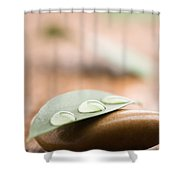 Water Drops On Leaf Shower Curtain