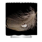 Wet Feather Shower Curtain