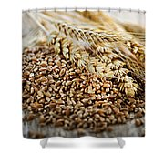 Wheat Ears And Grain Shower Curtain by Elena Elisseeva