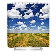 Wheat Farm Field At Harvest In Saskatchewan Shower Curtain by Elena Elisseeva