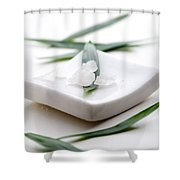 White Bath Salt Shower Curtain