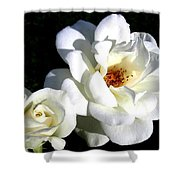White Perfection Shower Curtain