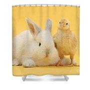 White Rabbit And Bantam Chick On Yellow Shower Curtain