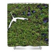 White-tailed Tropicbird Shower Curtain