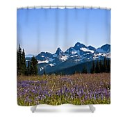Wildflowers In The Cascades Shower Curtain