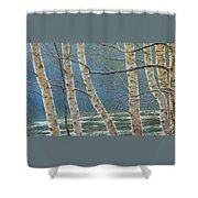 Winter Is Over Shower Curtain