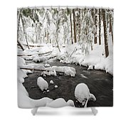 Winter Snow Along Still Creek In Mt Shower Curtain