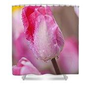 Woodburn, Oregon, United States Of Shower Curtain