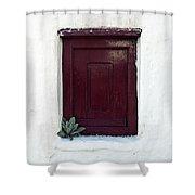 Wooden Window Shower Curtain