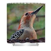 Woodpecker II Shower Curtain