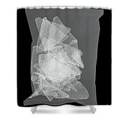 X-ray Of A Bag Of Corn Chips Shower Curtain