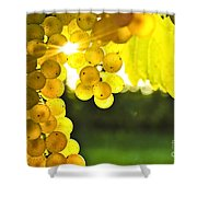 Yellow Grapes Shower Curtain