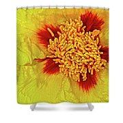 Yellow Peony Shower Curtain