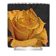 Yellow Rose Art Shower Curtain