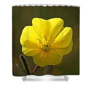 Yellow Wild Flower Shower Curtain