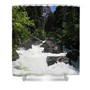 Yosemite National Park 2011 Shower Curtain
