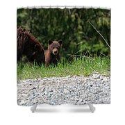 Black Bear Family Shower Curtain