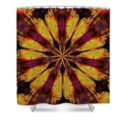 10 Minute Art 120611 Shower Curtain
