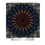 10 Minute Art 120611a Shower Curtain