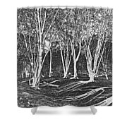 Ambresbury Banks Shower Curtain
