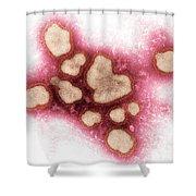 Influenza A Virus Shower Curtain