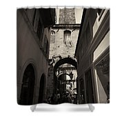 Split Old Town Shower Curtain