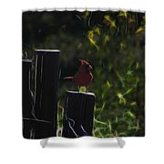 1384 Posted Shower Curtain