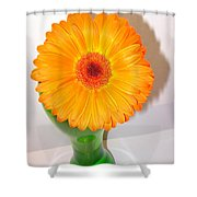 1396-001c1 Shower Curtain