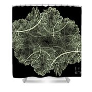 Fractal Image Shower Curtain
