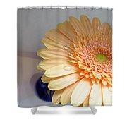 1511c1 Shower Curtain