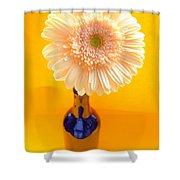 1525-001 Shower Curtain